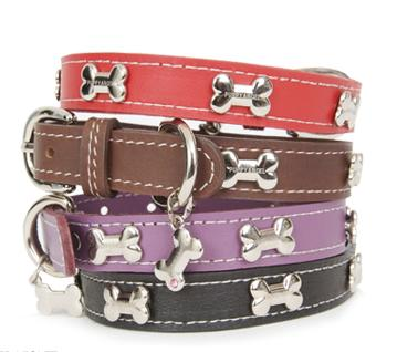 PA-HA115 - Silver Bone Leather Collar